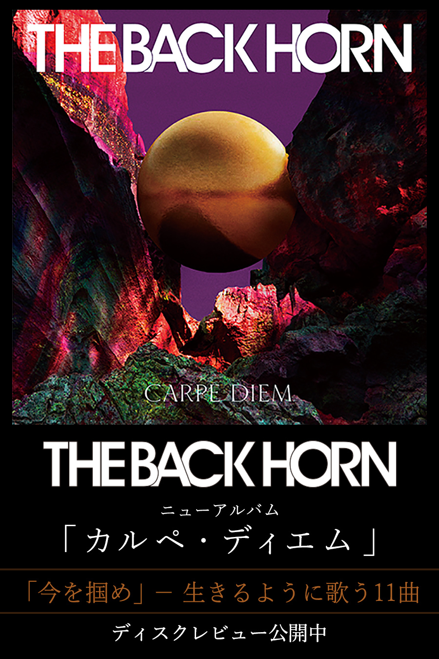 【SP】DR51 THE BACK HORN